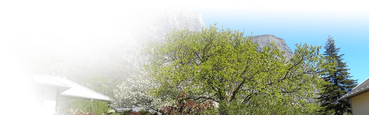 Saint julien de Montdenis - Paysage